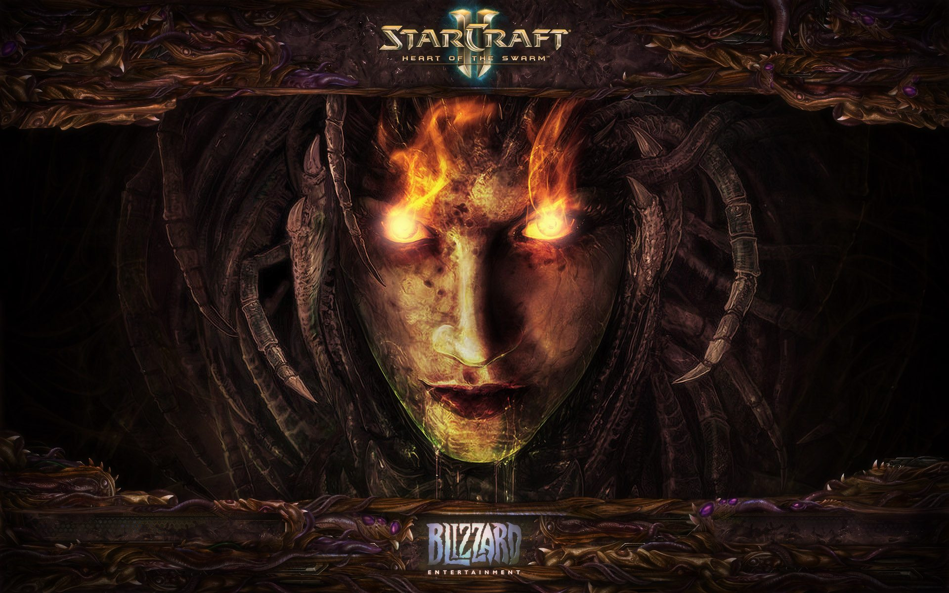 Starcraft II Heart of Swarm